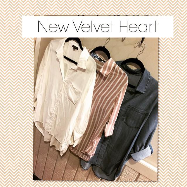 New Velvet Heart blouses just in!